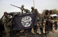 Milisi Boko Haram Berdiri di Bangkai Pesawat Tempur, Memperlihatkan 1 Jasad Hancur - JPNN.com