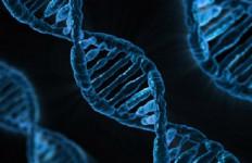 Mengenal Paspor Genomik, Mengandung Data Profil Genetik - JPNN.com