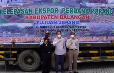 Bea Cukai Fasilitasi Ekspor Umbi Porang Kalimantan ke Jepang - JPNN.com