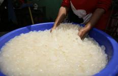 Perajin Kolang-kaling Kebanjiran Pesanan, Bisa Satu Ton Per Minggu - JPNN.com