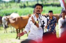Cara Mentan Syahrul Wujudkan Kabupaten Jeneponto Jadi Sentra Pertanian dan Peternakan Berkualitas - JPNN.com