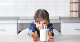 5 Khasiat Minum Susu Kambing Etawa, Penderita Diabetes Pasti Happy