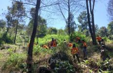 Sekat Bakar, Upaya MPA Paralegal Majalengka Cegah Kebakaran Hutan di Gunung Ciremai - JPNN.com