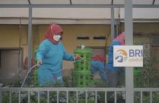 BRI Peduli Bantu Urban Farming di 18 Lokasi di Indonesia, Total Donasi Rp 1,8 Miliar  - JPNN.com