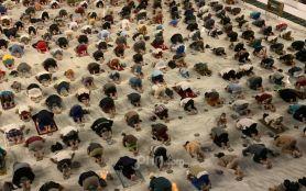 Khusus Kawasan Zona Merah, Salat Idulfitri Berjemaah di Masjid Atau Lapangan Dilarang- JPNN.com Jatim