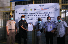 Bea Cukai Kendari Fasilitasi Ekspor Perdana Ikan Hias ke Brunei Darussalam - JPNN.com