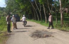 Kecelakaan Maut di Aceh Timur, Dua Orang Tewas, Tiga Kritis - JPNN.com