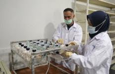 Balitbang Kementan: Eucalyptus Berhasil pada Uji Klinis SARS-CoV-2 - JPNN.com
