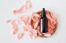 5 Manfaat Bunga Mawar Bagi Kesehatan - JPNN.com