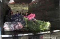 Truk Ini Tak Hanya Berisi Sayuran, Polisi Kaget - JPNN.com