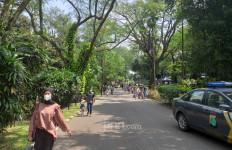 Ini Syarat Berwisata ke Kebun Binatang Ragunan di Masa Libur Lebaran 2021 - JPNN.com