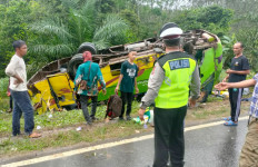 Bus Pengangkut Puluhan Penumpang Terguling di Jalinsum Mesuji, Begini Kondisinya - JPNN.com