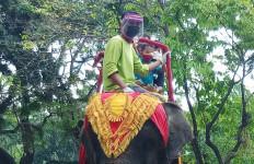 Libur Lebaran, KBS Masih Jadi Wisata Favorit Warga Surabaya - JPNN.com