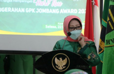 Konon, Perempuan Ini Didorong Suharso Manoarfa Pimpin PPP Jatim - JPNN.com