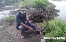 Selin Saksikan Tubuh Ibunya Diseret Buaya ke Sungai - JPNN.com