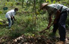 Gandeng Instiper Yogyakarta, Sarihusada Kembangkan Taman Kehati Eroniti - JPNN.com