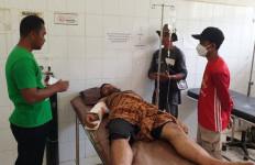 Asisten Pawang Diserang Gajah Liar, Begini Kondisinya - JPNN.com