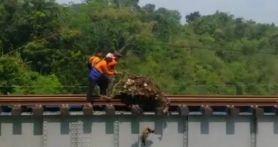3 Orang Ini di Atas Rel Kereta, Membuang Sesuatu, PT KAI Memohon Maaf