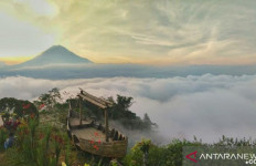 Mengenal Bukit Simbar Semeru, Destinasi Wisata Eksotik Baru di Lumajang - JPNN.com