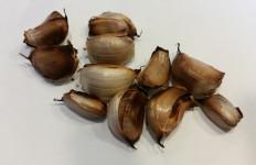 3 Manfaat Dahsyat Rutin Konsumsi Bawang Putih Panggang Campur Madu Sebelum Tidur - JPNN.com