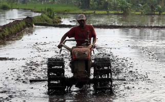 Begini Cara CROWDE Turut Memajukan Sektor Pertanian Indonesia - JPNN.com