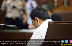 Besok Pengadilan Tentukan Nasib Papa Novanto - JPNN.com