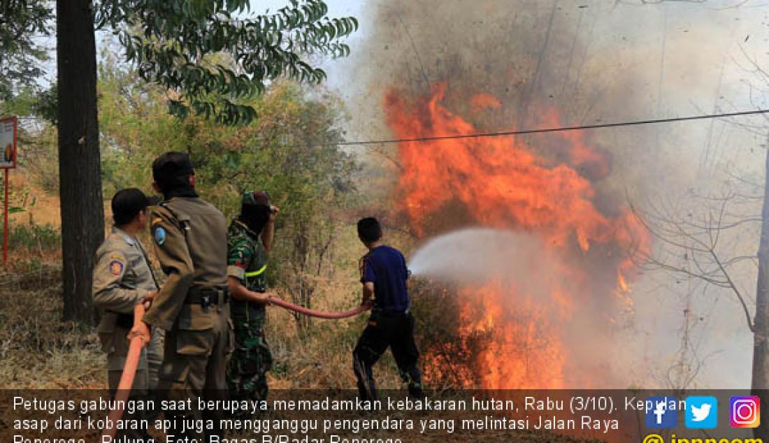 Petugas gabungan saat berupaya memadamkan kebakaran hutan, Rabu (3/10). Kepulan asap dari kobaran api juga mengganggu pengendara yang melintasi Jalan Raya Ponorogo - Pulung. Foto: Bagas B/Radar Ponorogo - JPNN.com