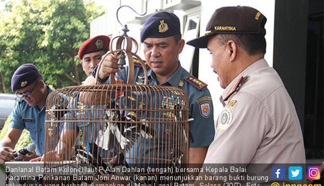 Danlanal Batam Kolonel laut P Alan Dahlan (tengah) bersama Kepala Balai Karantina Perikanan Batam Joni Anwar (kanan) menunjukkan barang bukti burung selundupan yang berhasil diamankan di Mako Lanal Batam, Selasa (30/7). Foto: Cecep M/Batam Pos - JPNN.com