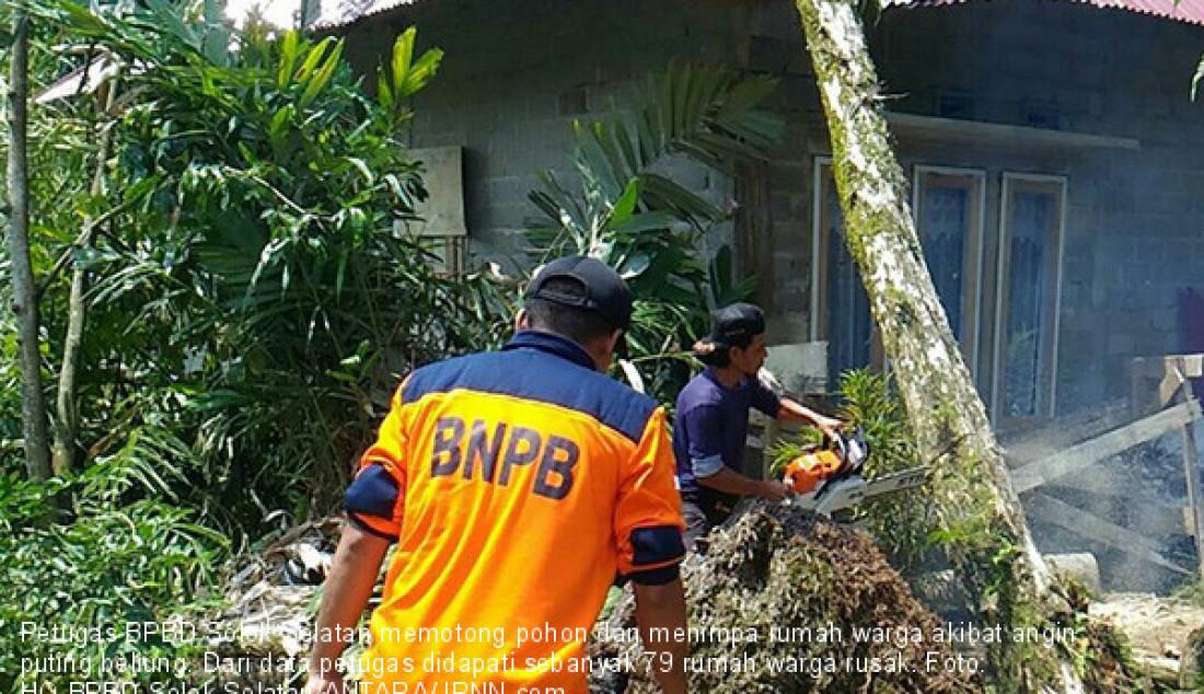 Petugas BPBD Solok Selatan memotong pohon dan menimpa rumah warga akibat angin puting beliung. Dari data petugas didapati sebanyak 79 rumah warga rusak. Foto: HO BPBD Solok Selatan/ANTARA/JPNN.com - JPNN.com