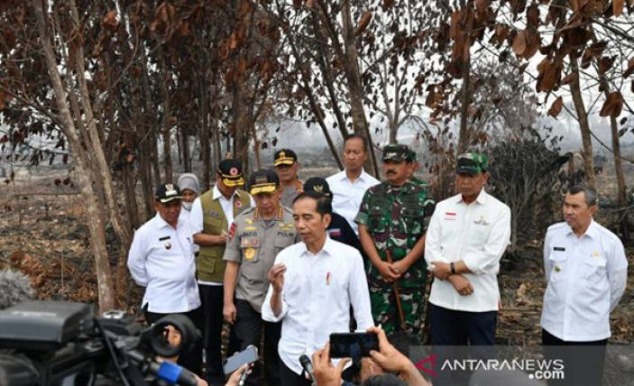 Jokowi Tegaskan Pentingnya Pencegahan Karhutla - JPNN.com