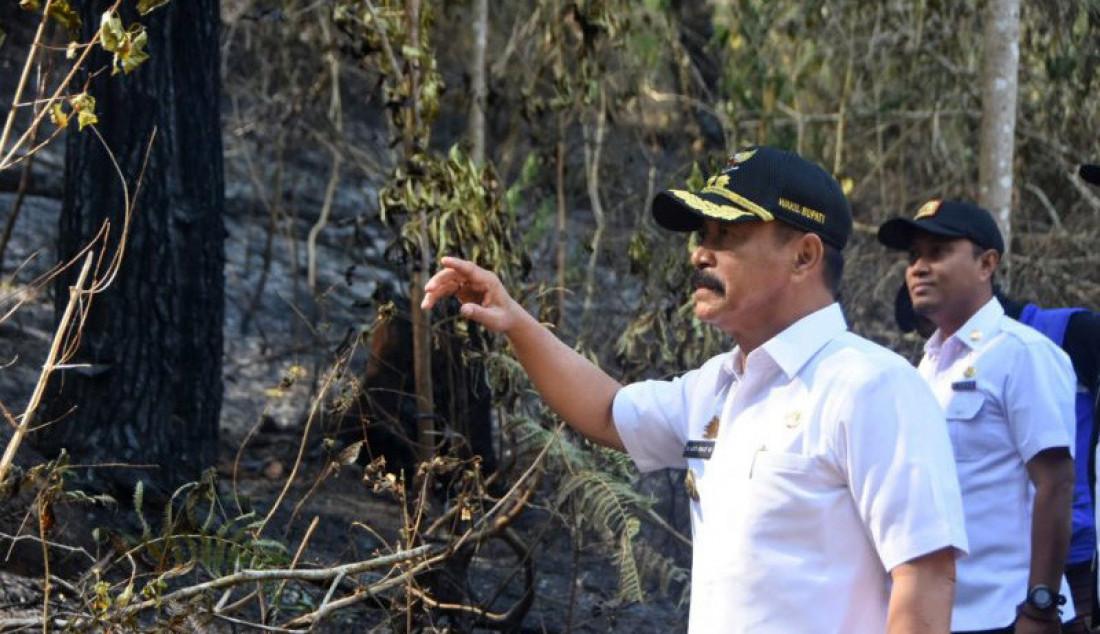Wabup Gowa Tinjau Lokasi Terdampak Karhutla - JPNN.com