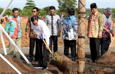 Disambar Petir, Pohon Jokowi Meranggas - JPNN.com