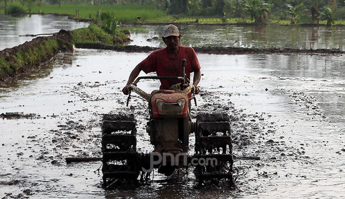 Petani membajak sawah menggunakan traktor di daerah Kampung Sawah, Ciomas, Bogor, Sabtu (18/7). Pemerintah dorong produksi pertanian untuk menghadapi masa krisis selanjutnya setelah wabah pandemi corona ini berakhir. Foto: Ricardo - JPNN.com