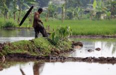 Syarief Hasan Soroti Alih Fungsi Lahan Pertanian, Pemerintah Diminta Ingat Hal Ini - JPNN.com