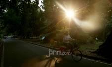 Libur Iduladha, Kebun Raya Bogor Dipadati Warga - JPNN.com