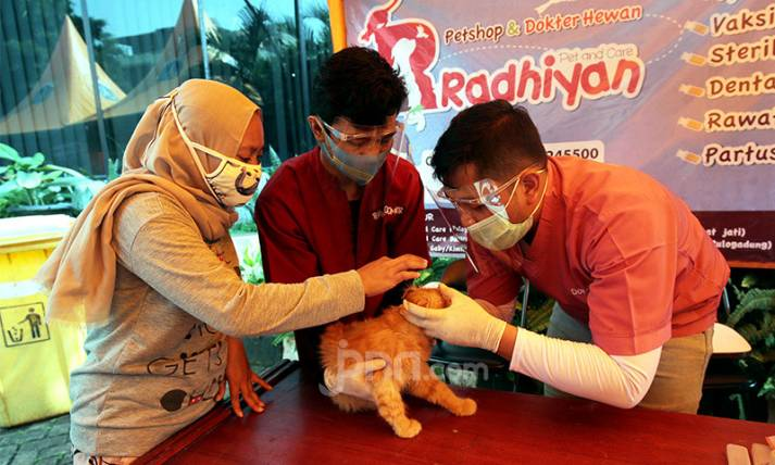 Peringatan Hari Rabies Sedunia - JPNN.com