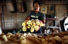 Kementan Dorong Konsumsi Pangan Lokal Menjadi Gaya Hidup Sehat - JPNN.com