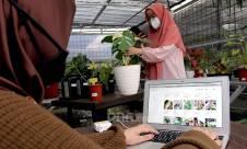 Dongkrak Omzet Penjualan Tanaman Hias dengan Pemasaran Daring - JPNN.com