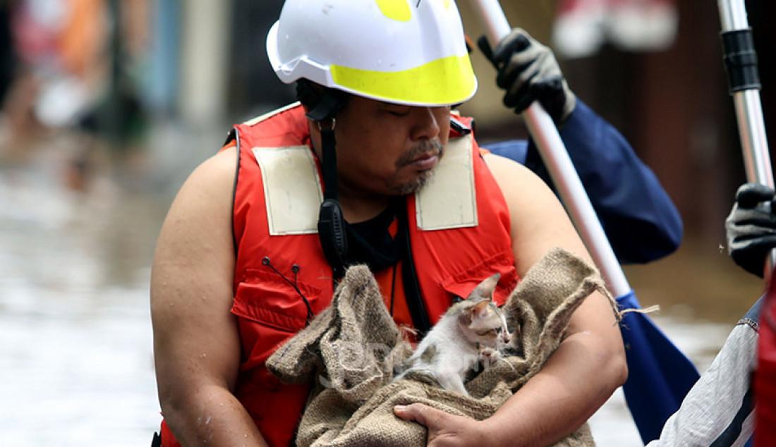 Petugas penyelamat mengevakuasi anak kucing yang terjebak banjir di Kelurahan Duren Tiga, Kecamatan Pancoran, Jakarta Selatab, Sabtu (20/2). Hujan yang mengguyur sejak Jumat (19/2) membuat sejumlah titik di Jakarta terendam banjir. Foto: Ricardo - JPNN.com