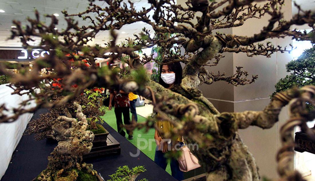 Pengunjung melihat pameran Suiseki Bonsai di Tangerang City Mall, Tangerang, Jumat (26/2). Pameran bonsai yang berlangsung pada 26-28 Februari 2021 itu merupakan bagian dari perayaan Imlek 2572. Foto: Ricardo - JPNN.com