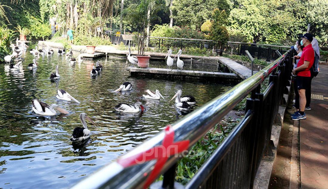 Suasana Taman Margasatwa Ragunan (TMR) di Jakarta Selatan, Minggu (14/3) yang kembali dibuka untuk umum. Warga DKI mengunjungi TMR untuk untuk rekreasi maupun berolahraga. Foto: Ricardo - JPNN.com