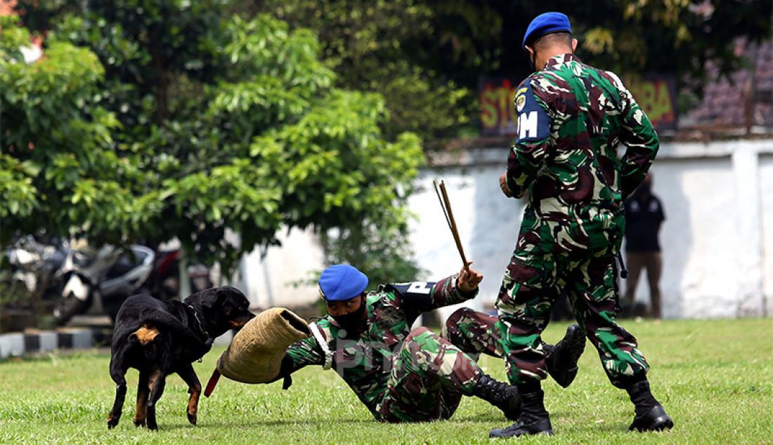 Personel Polisi Militer Kodam Jaya melakukan atraksi bersama anjing di sela peresmian Smart Instalasi Tahanan Militer di Markas Pomdam Jaya, Jakarta, Selasa (20/4). Foto: Ricardo - JPNN.com
